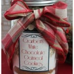 Cookies in a Jar Recipe:  Cranberry White Chocolate Oatmeal Cookies