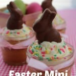 Easter Mini Cakes Recipe