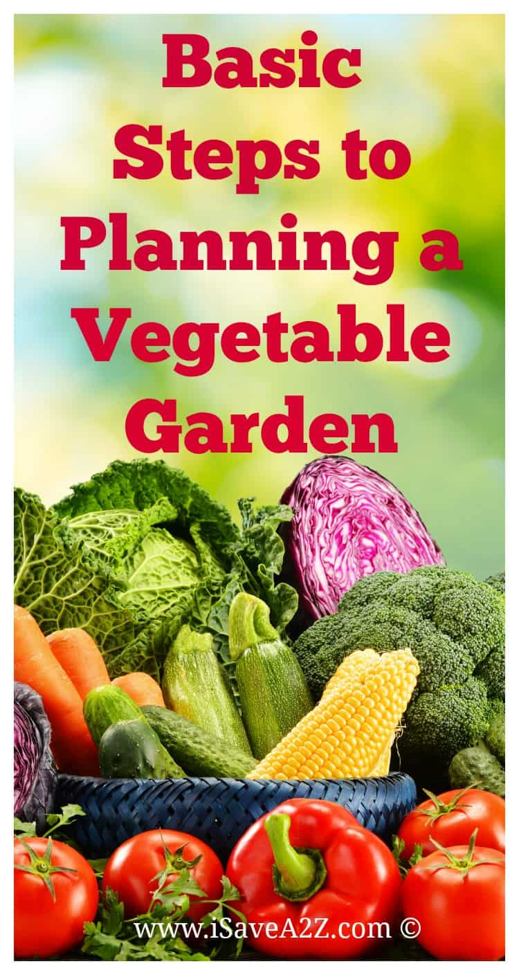 Basic Steps to Planning a Vegetable Garden iSaveA2Zcom