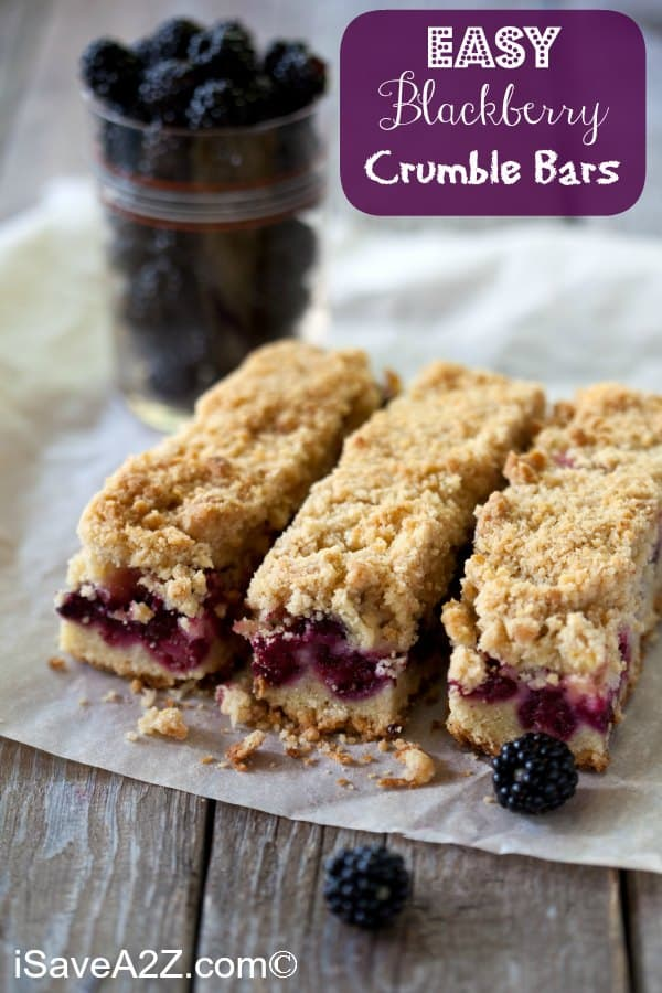 Easy Blackberry Crumble Bars Recipe! Perfect for Spring & Summer!