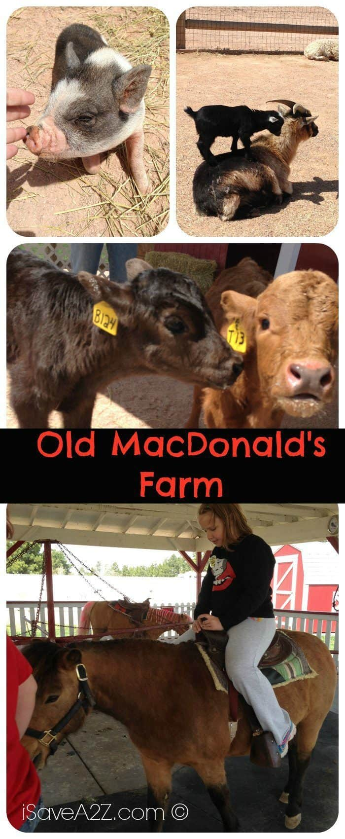 Old MacDonald's Farm in Rapid City, South Dakota