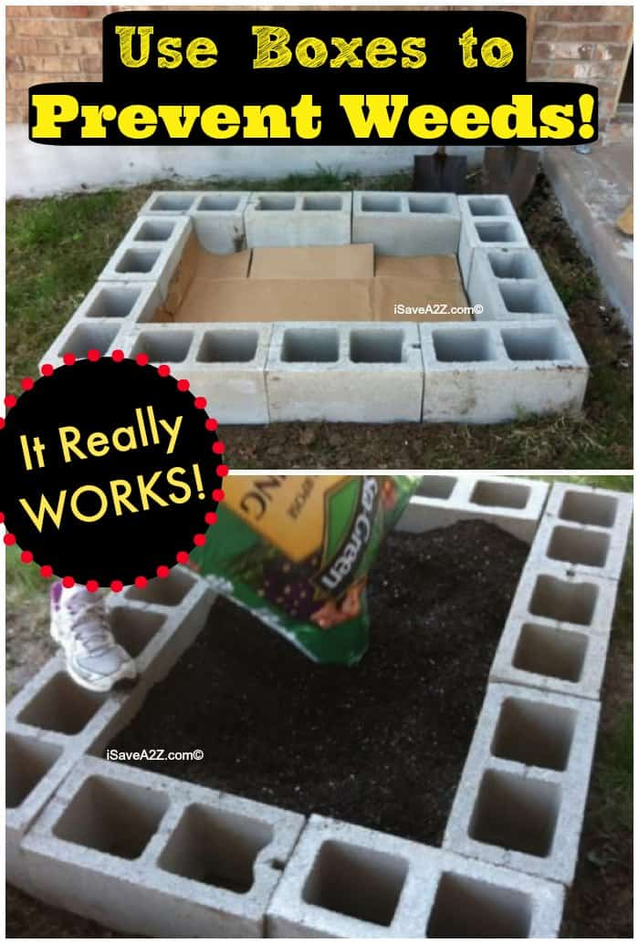 Use Boxes In A Raised Garden To Prevent Weeds Isavea2z Com