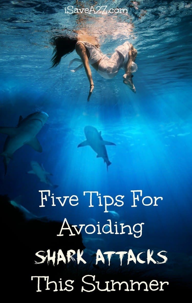 tips on how to avoid sharks when swimming in shark waters 10 tips for staying safe around sharks  use extra caution when waters are murky and avoid brightly colored  surfing with sharks, swimming with sharks water.