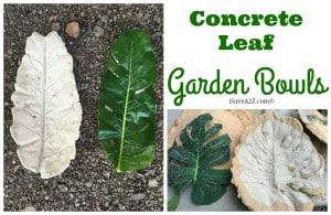 DIY Concrete Leaf Garden Bowls