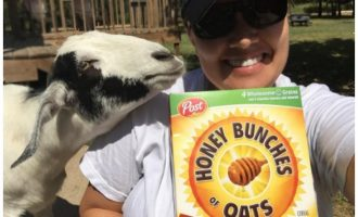 Honey Bunches of Oats plus a Giveaway!